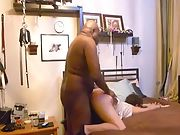 Wife visits a black bull for sex